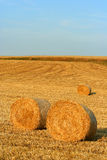 Hay Bale Stock Photography
