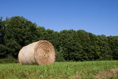 Hay bale Royalty Free Stock Photography