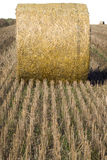 Hay bale Royalty Free Stock Photo