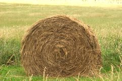 Free Hay Bale Stock Images - 11684