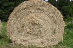Hay bale. Beautiful hay bale on a green grass background Stock Photo