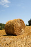 Hay bale. A single hay bale standing in a field on a sunny summer's day Stock Photography