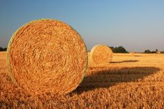 Hay bale. Yellow hay bale in a farm royalty free stock photos