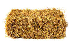 Free Hay Bale Stock Photo - 28268850
