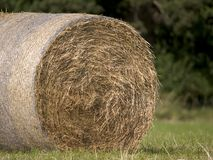 Hay bale 3. Close up of hay bail Stock Images