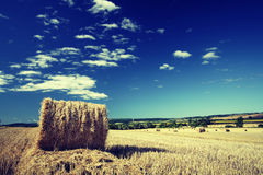 Hay bale. With cross-processed colors Stock Images