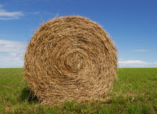 Hay Bale. Green field and blue sky Stock Photo