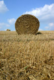 Hay bale. In field, Lewes, East Sussex, UK Stock Photo