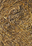 Hay Bale 2 Images stock