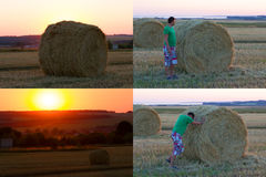 Hay bale. Agriculture field with sky. Stock Photography