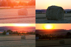 Hay bale. Agriculture field with sky. Stock Photo