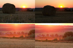 Hay bale. Agriculture field with sky. Stock Images