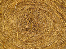 Hay bale background. Close up of a round hay bale Royalty Free Stock Images