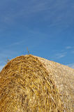 Hay bale background closeup Stock Images