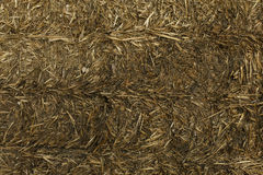 Hay bale background Stock Photography