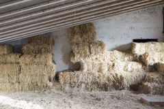 Hay bale background royalty free stock photo