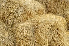 Hay bale background texture. Royalty Free Stock Photos
