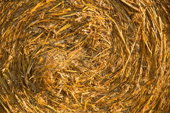 Hay bale background. A twisted hay bale background Royalty Free Stock Photos