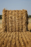 Hay bale, big Royalty Free Stock Photo