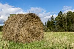 Hay Bale in campagna Immagini Stock Libere da Diritti