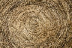 Hay Bale close up Royalty Free Stock Images