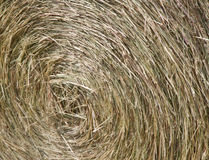 Hay bale close up. Hay roll harvest textured thatch background Stock Photography