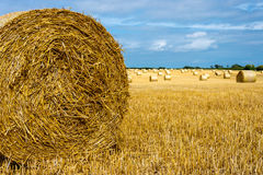 Hay Bale. Close up of hay bale with bales in the distance royalty free stock image