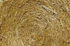 Hay bale close up Royalty Free Stock Photo