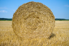 Hay bale. Close up of hay bale textures Stock Photo