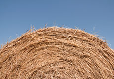 Hay bale. Close up of the top a hay bale against a blue sky Royalty Free Stock Photo