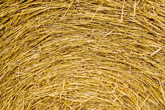 Hay bale. Closeup of the side of a hay bale Royalty Free Stock Photo