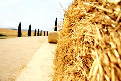 The hay bale. In the country road Royalty Free Stock Photography