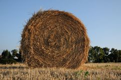 Hay bale in country sunset Royalty Free Stock Photo