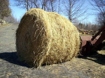 Hay Bale in countryside Stock Images