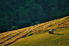 Hay bale in countryside. Single hay bale on hill in countryside, autumn scene royalty free stock photography