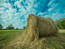 Hay Bale in Countryside Royalty Free Stock Photo