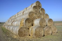 Hay bale in the countryside. In green field royalty free stock photos