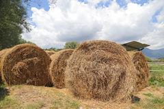 Hay bale in the countryside Royalty Free Stock Photography