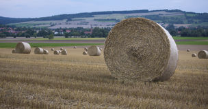 Hay bale countryside landscapes Stock Image