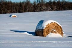 Hay Bale Covered im Schnee Lizenzfreies Stockfoto
