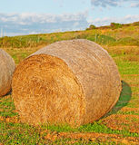 Hay bale at dusk. Hay bale on a field at sunset Stock Photo