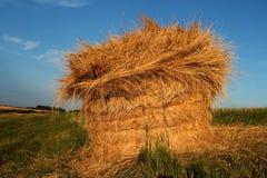 Hay Bale Explosion Foto de Stock