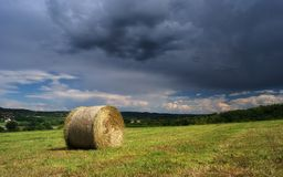 Hay bale farm / Hay bale on the field after harvest, Hungary Stock Photos