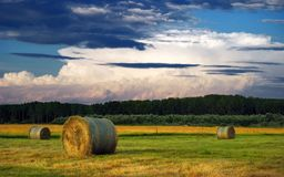 Hay Bale Farm Royalty Free Stock Photo