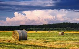 Hay Bale Farm Royalty Free Stock Images