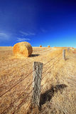 Hay bale with fence Stock Images