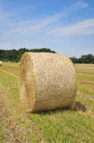Hay bale in the field Stock Photos