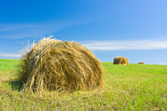 Hay bale on a field. Focus on first bale Stock Image