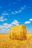 Hay bale on the field Royalty Free Stock Images
