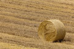 Hay bale on the field. In Tuscany, Italy Stock Photography
